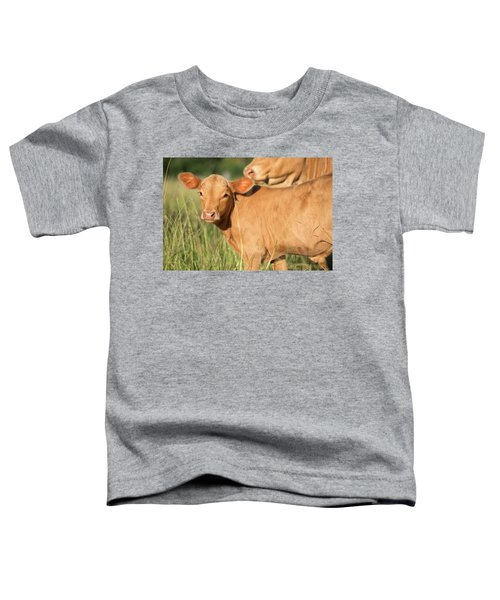 Cute Calf Toddler T-Shirt