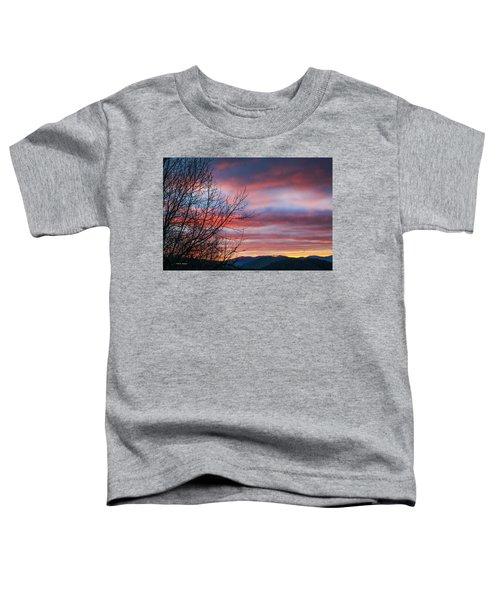 December Dawn Toddler T-Shirt