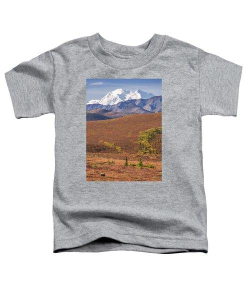 Denali Grizzly Toddler T-Shirt