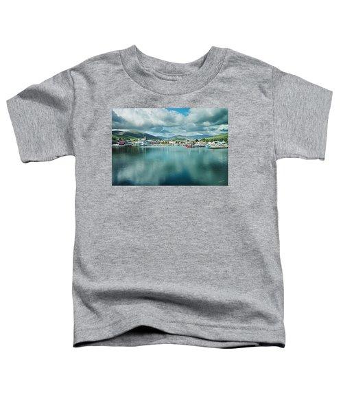 Dingle Delight Toddler T-Shirt