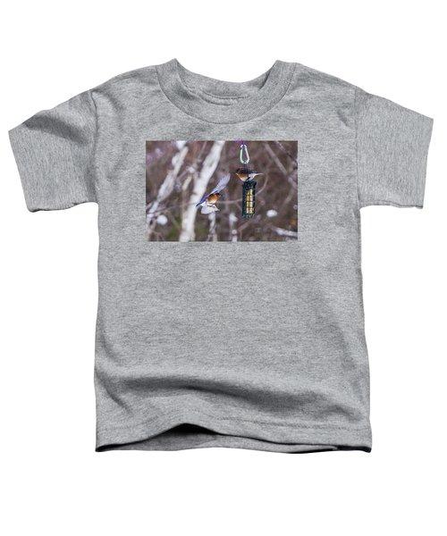 Docking Bluebird Toddler T-Shirt