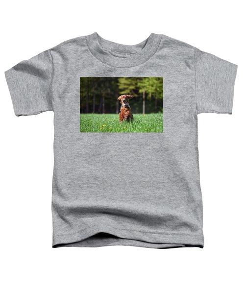 Elf Toddler T-Shirt