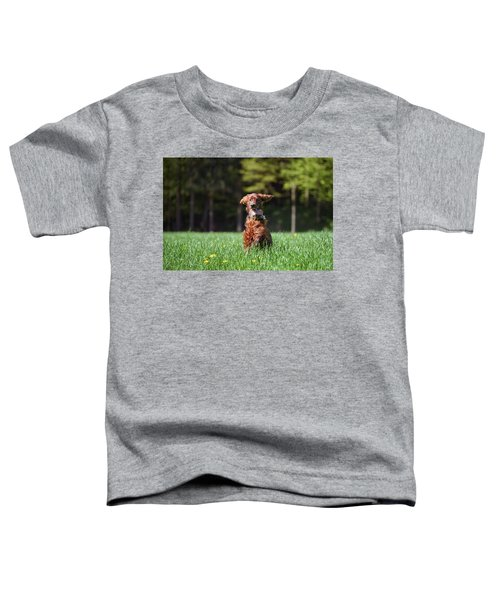 Elf Toddler T-Shirt