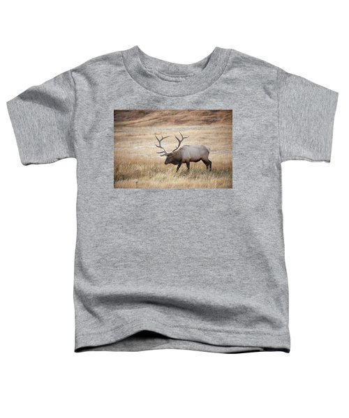 Elk In Yellowstone National Park Toddler T-Shirt