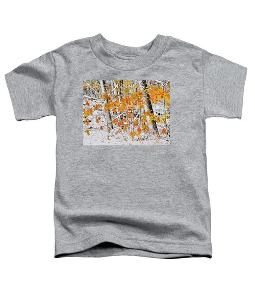 Fall And Snow Toddler T-Shirt