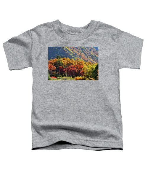 Fall Colors Along Avalanche Creek Road Toddler T-Shirt