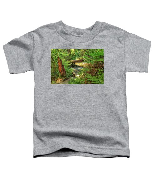Fallen Trees In The Hoh Rain Forest Toddler T-Shirt