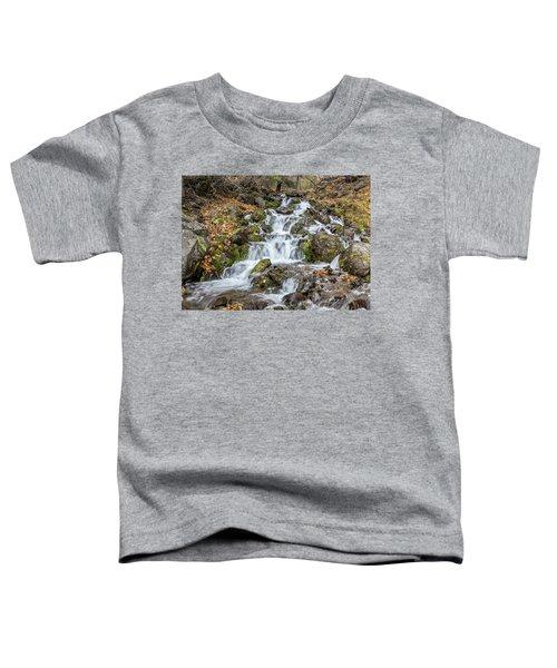 Falls Creek Toddler T-Shirt