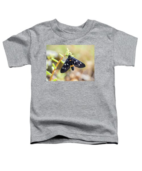 Fegea - Amata Phegea -black Insect With White Spots And Yellow Details Toddler T-Shirt