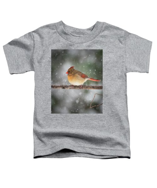 Female Red Cardinal Snowstorm Toddler T-Shirt