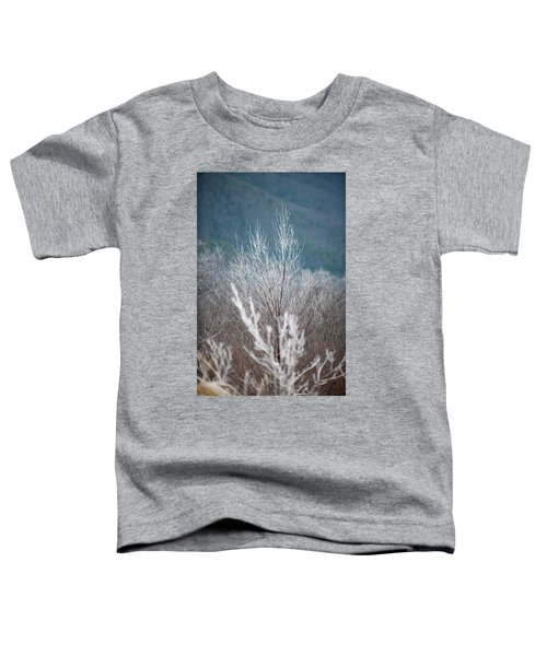 Fingers Of Hoarfrost Toddler T-Shirt