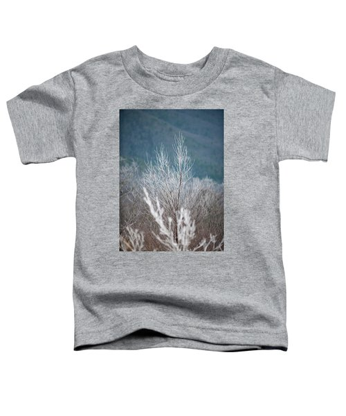 Fingers Of Hoarfrost Toddler T-Shirt