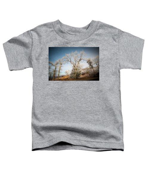 Frost On The Mountain Toddler T-Shirt