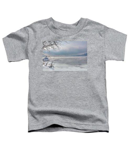 Frozen Fog Toddler T-Shirt