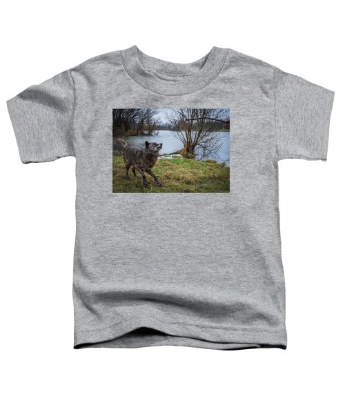 Get The Stick Toddler T-Shirt