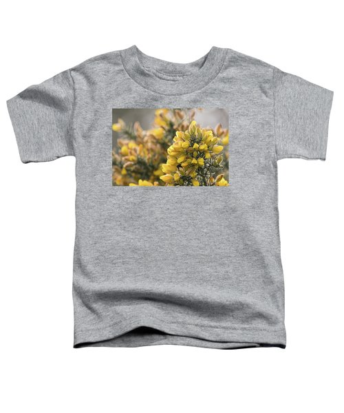Gorse Toddler T-Shirt