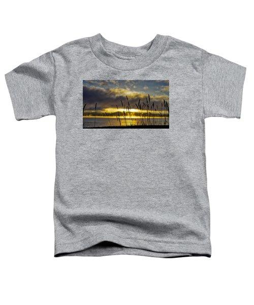 Grassy Shoreline Sunrise Toddler T-Shirt