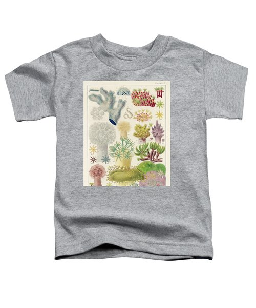 Great Barrier Reef Alcyonaria From The Great Barrier Reef Of Australia  1893 By William Saville-ken Toddler T-Shirt