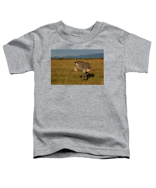 Grevy's Zebra Toddler T-Shirt