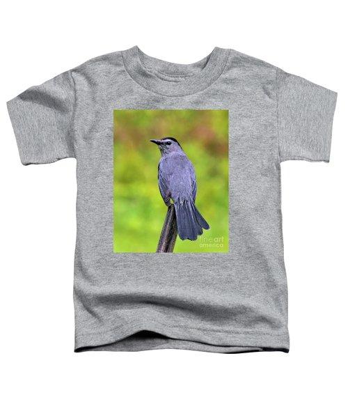 Grey Catbird Toddler T-Shirt