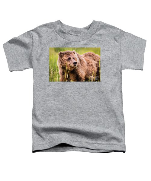 Grizzly In Lake Clark National Park, Alaska Toddler T-Shirt