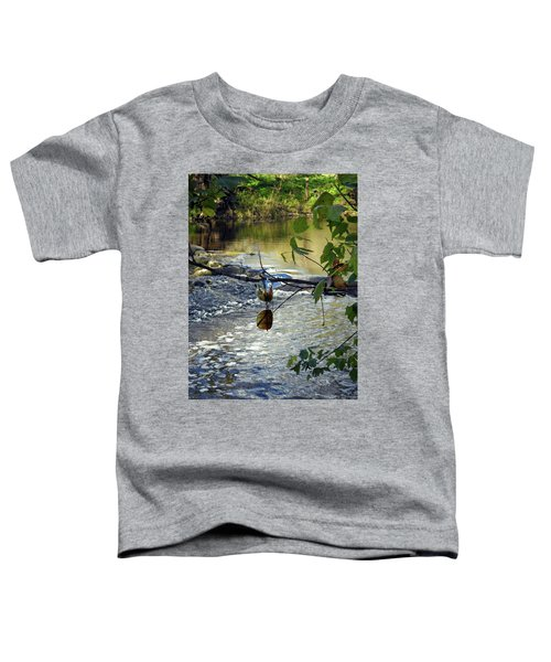 Gypcy River Toddler T-Shirt