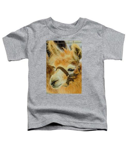Happy Alpaca Toddler T-Shirt