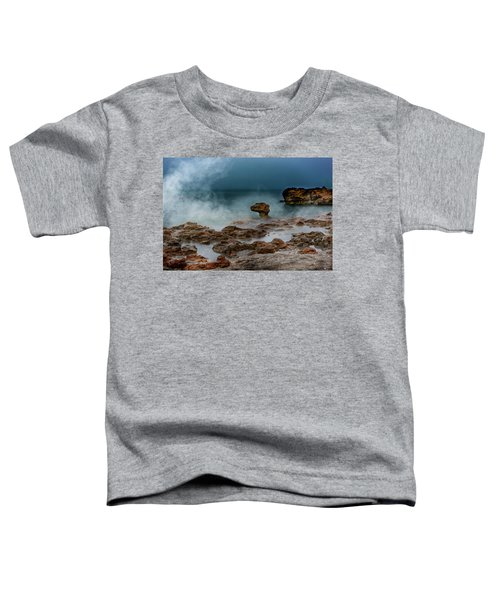 Head Of The Dragon Toddler T-Shirt
