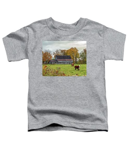 Herefords In Fall Toddler T-Shirt