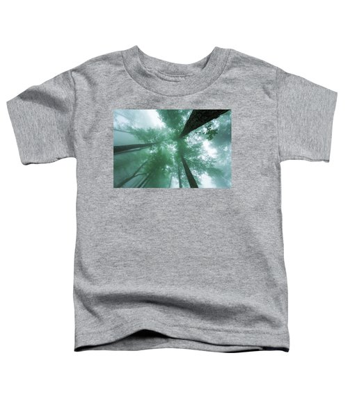 High In The Mist Toddler T-Shirt