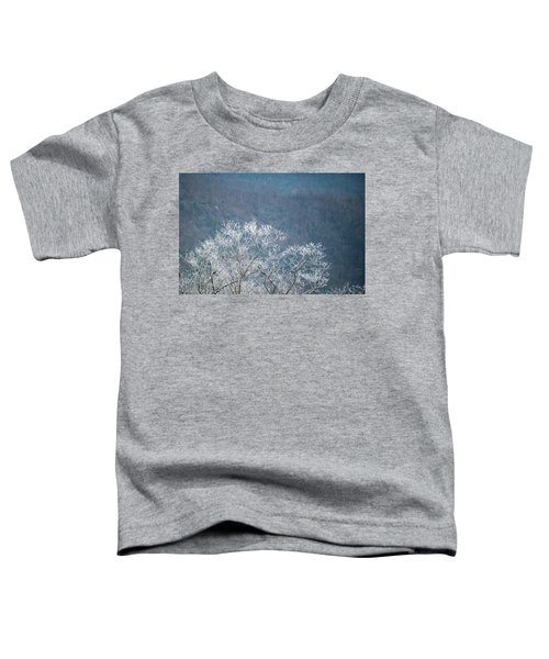 Hoarfrost Collects On Branches Toddler T-Shirt