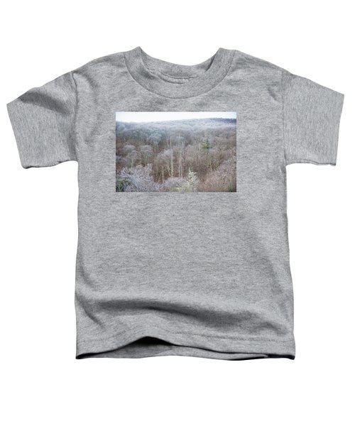 Hoarfrost In The Tree Tops Toddler T-Shirt
