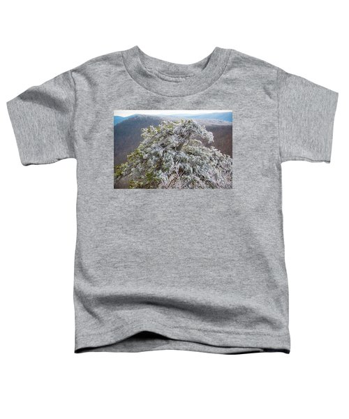 Hoarfrost On Trees Toddler T-Shirt