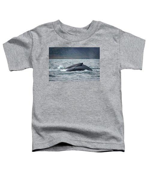 Humpback 7 Toddler T-Shirt