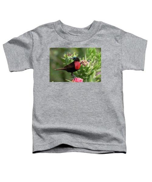 Hunter's Sunbird Toddler T-Shirt