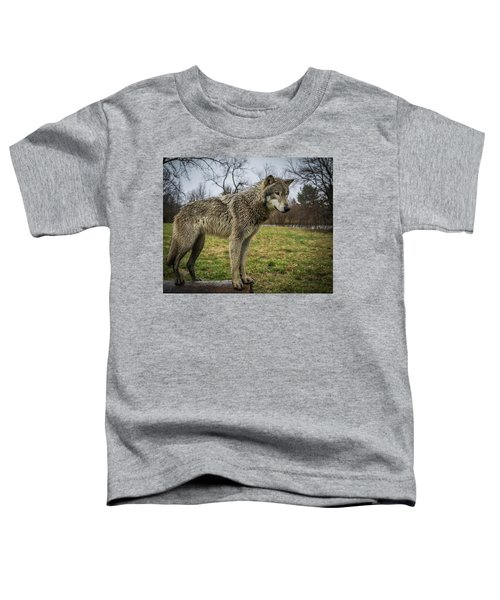 I See It Toddler T-Shirt
