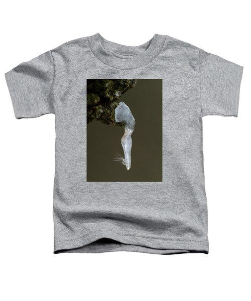 Ice Dancer Toddler T-Shirt