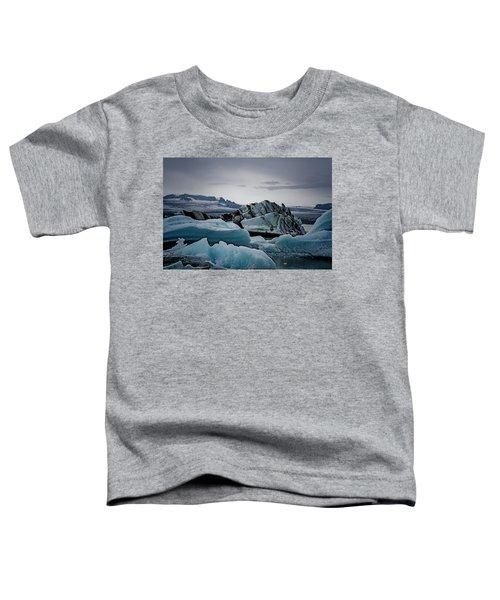 Icy Stegosaurus Toddler T-Shirt
