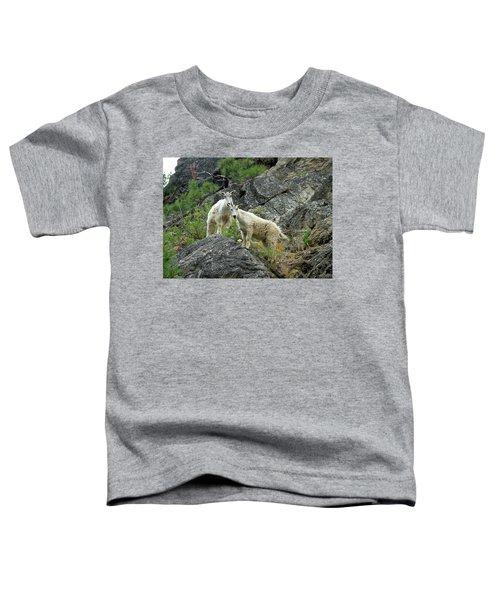 Idaho Mountain Goats Toddler T-Shirt