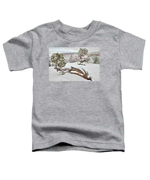 Independence Canyon Of Colorado National Monument Toddler T-Shirt