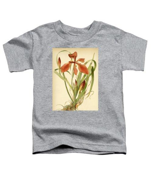 Iris Cuprea Copper Iris.  Toddler T-Shirt