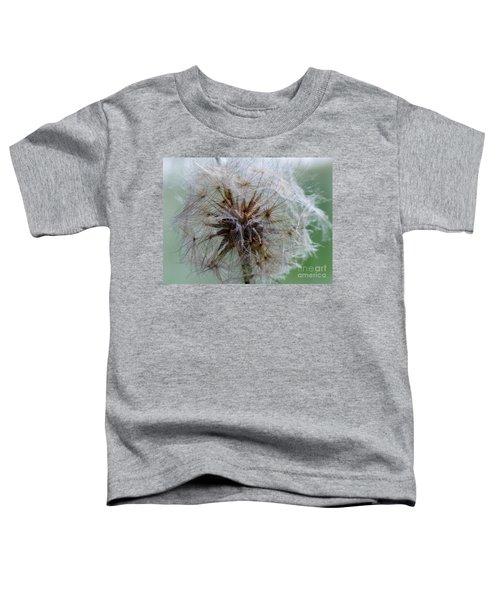 Irish Daisy Toddler T-Shirt