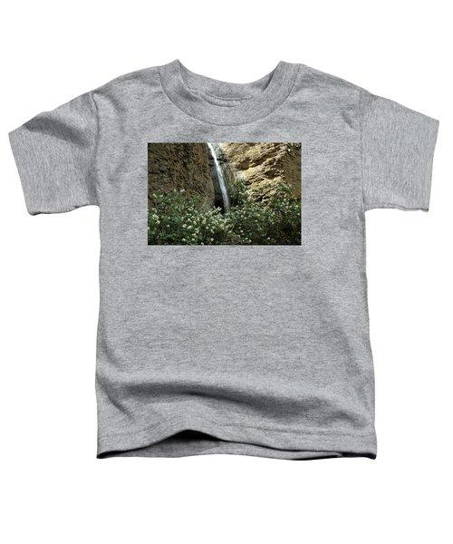 Jump Creek Falls Canyon Toddler T-Shirt