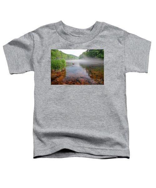 June Morning Mist Toddler T-Shirt