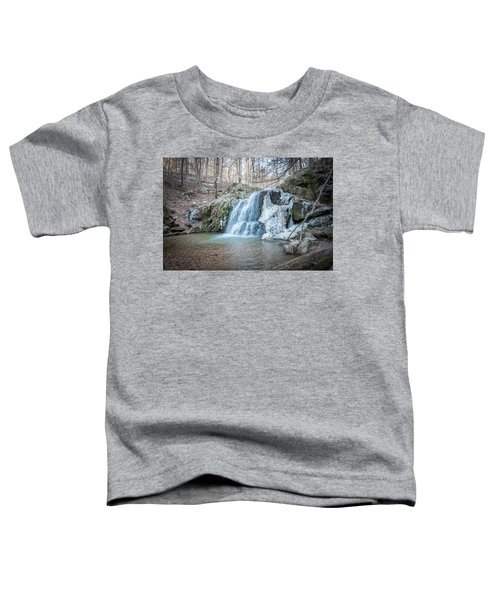 Kilgore Falls In Winter Toddler T-Shirt