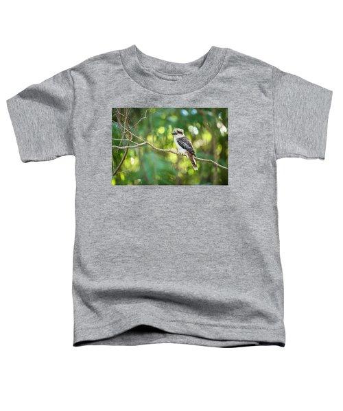 Kookaburra Toddler T-Shirt