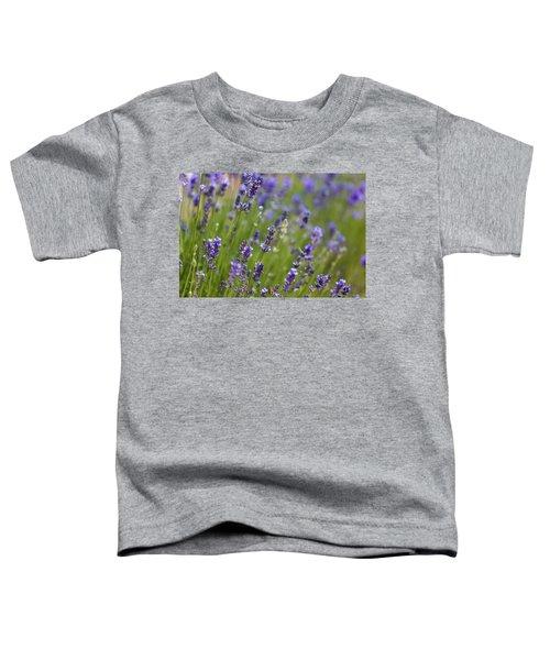 Lavendel  Toddler T-Shirt