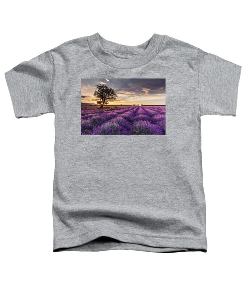 Lavender Sunrise Toddler T-Shirt