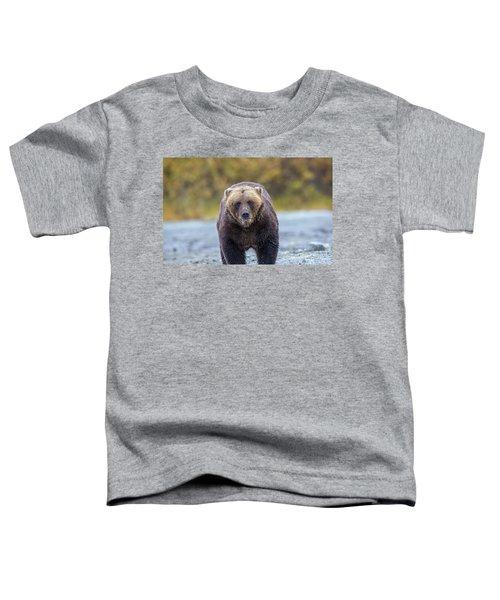 Lazy C T Toddler T-Shirt