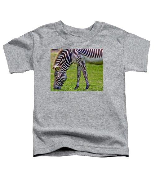 Love Zebras Toddler T-Shirt